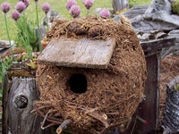 Great ideas and things to try in my own garden! Visit my website/blog at http://ourfairfieldhomeandgarden.com