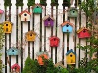 Birdhouses Galore