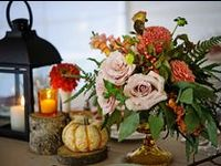 Autumnal Colors wrapped in Natural Elements