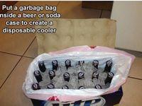 What a splendid idea.