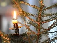 ~*Christmas Joy*~