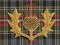 If you want to identify tartans, it's easy - you simply look under the kilt, and if it's a quarter-pounder, you know it's a McDonald's. ~Billy Connolly~ Canadian Heritage Minister James Moore announced Wednesday 9 March 2011 that the Maple Leaf Tartan is now Canada's official tartan.the pattern incorporates the green of the leaves' summer foliage, the gold which appears in early autumn, the red which appears with the coming of the first frost, and the brown tones of the fallen leaves.