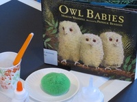 Children's Books with Activities
