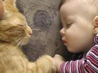 cute kids & animals