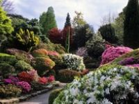 Beautiful gardens, public & private residential gardens. Be sure to check out my other boards for specific gardening and landscape info!