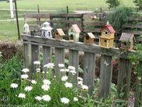 Cute Yard Ideas