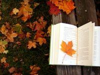Autumn Is My Favorite