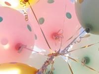 Celebrations & Entertaining