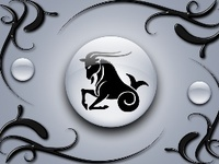Who I am,. Capricorn