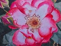 """As the sun colours flowers, so does art colour life."" John Lubbock"