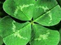 Un verde siempre es un verde... no importa se es aditivo o sustractivo. A green is always a green ... does not matter it is additive or subtractive.