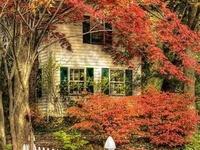 """Autumn, the year's last, loveliest smile.""   William Cullen Bryant"