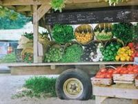 Ideas for starting, organizing and setting up a farm stand.