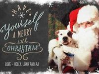 Spreading the seasonal cheer with festive best friends and holiday pet health tips and topics from around the web