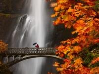 Beautiful and Creative Photography
