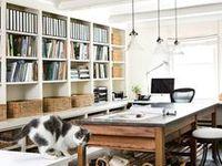 Studio, Craftroom, Organization etc.