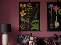Plum> Purple>Lavender Wall Color