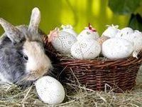 die besten 17 bilder zu ostern bastelanleitungen auf pinterest eier kaninchen und roboter. Black Bedroom Furniture Sets. Home Design Ideas