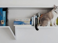Ways to store books from the practical to the wild.