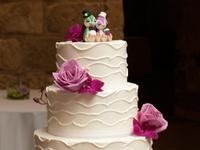 Wedding Cakes Worcester Ma Wedding Cakes On Pinterest Cowboy And Cowgirl Elegant Wedding Cakes