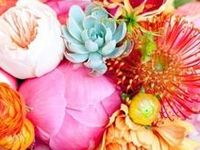 Wedding: Florals