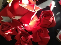 Origami (the art of paperfolding) is a great way to explore new designs and to make new friends.
