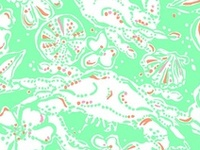 All things Lilly that I love. Life, Lilly and the pursuit of happiness.