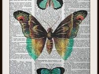 Butterflies, Bowtie pattern and Home