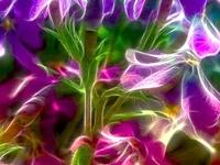 Beautiful Wondrous Flowers - Growing Things
