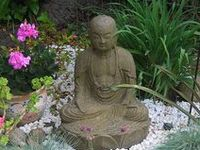 Meditations & mindfulness