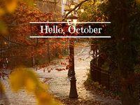 ~ Fall ~