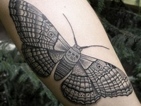 Tattoos I Wish I Had The Guts To Get....