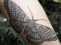 Tattoos I Wish I Had The Guts To Get....