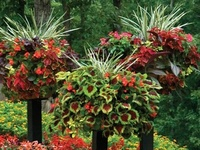 all things for the patio, porch, garden and yard.