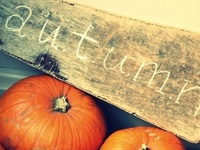 Decorating for autumn, fall, Halloween and Thanksgiving.