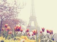Paris/Italy