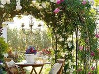 Garden / Outdoors