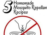DIY Recipes