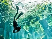 Memorable Swimming Places