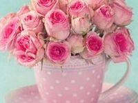 Pink is my Favorite color Think PRETTY IN Pink