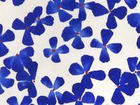 (Surface Design & Textile Patterns)