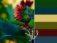 Color Palettes, Collages, Mood Boards & Vignettes.