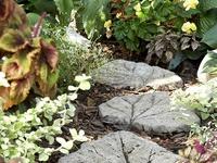 Garden Lovelies