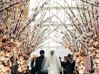 """Décor, table settings, seating arrangements, and other cool ideas for the prettiest wedding ever.  This board was formerly titled """"What the future may hold"""""""