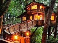 Tree houses, yo.