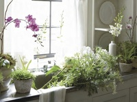 Gorgeous flower arrangements in beautiful vases and creative containers and florist shops around the world