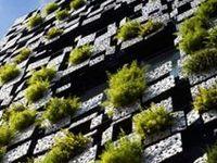 Architecture/ Landscape Architecture