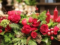 Christmas / Tablescapes