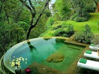 A place to relax and enjoy nature.    Colors: turquoise, Kelly green, tangerine, bright yellow, red
