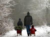 Once Upon a Christmas 2013